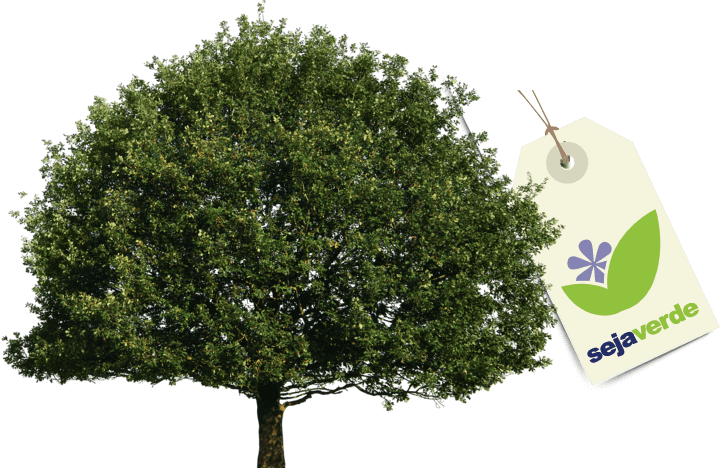 Um árvore com um etiqueta escrito Casa Verde